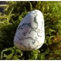 Agate Dendritique (Merlinite) Polie 15 Gr