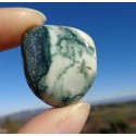 Agate Dendritique (Merlinite) Polie 15 Gr