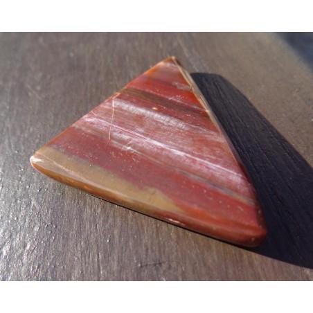 Bois Fossilisé Poli 16 Gr - Cabochon