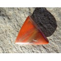 Bois Fossilisé Poli 7 Gr - Cabochon