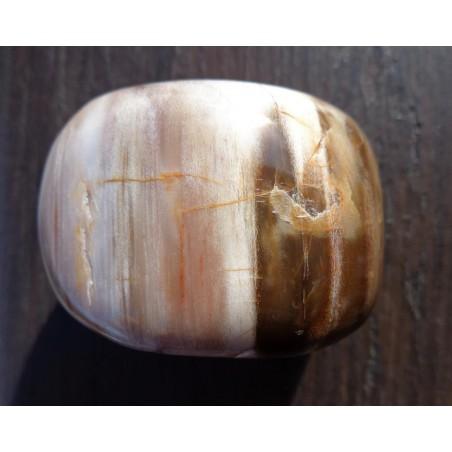 Bois Fossilisé Poli 112 Gr