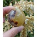 Septaria Polie 68 Gr