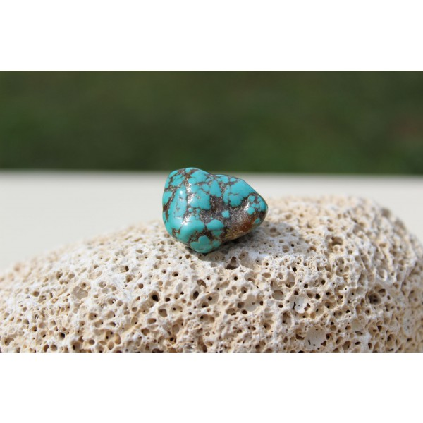 Turquoise Polie 12 Gr