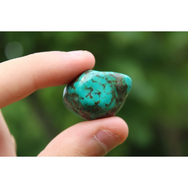 Turquoise Polie 11 Gr