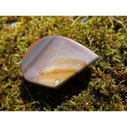 Jaspe Polychrome Poli 19 Gr - Cabochon