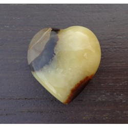 Septaria Polie 49 Gr - Coeur